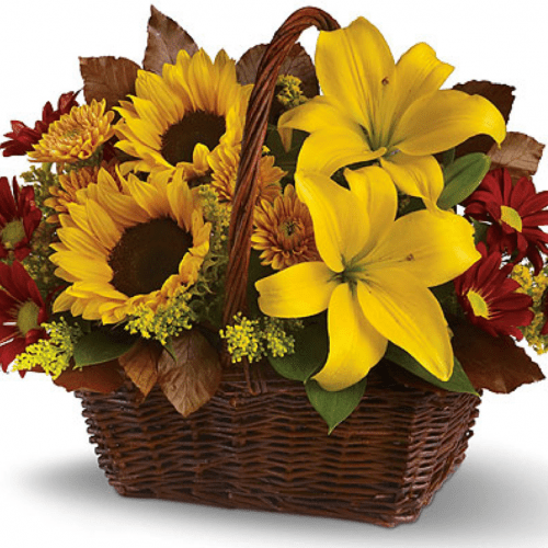 Image of the Bountiful Basket