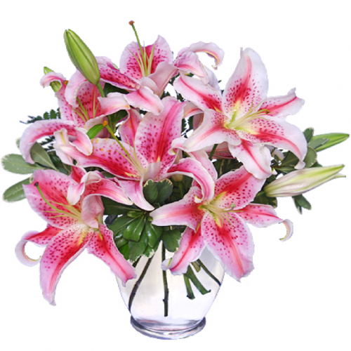 Image of the Stunning Stargazer floral arrangement