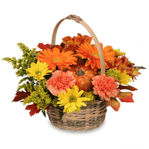 Image of the Enjoy Fall floral arrangement