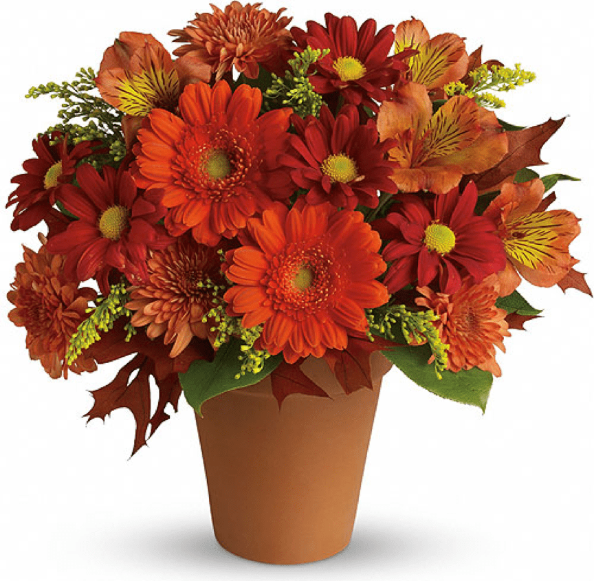 Image of the Signs of Fall Regular floral arrangement