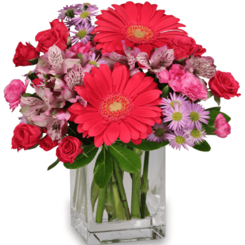 Image of the Epic Bloomers arrangement