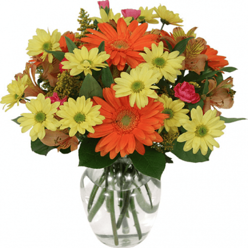 Image of the Lazy Daisies bouquet