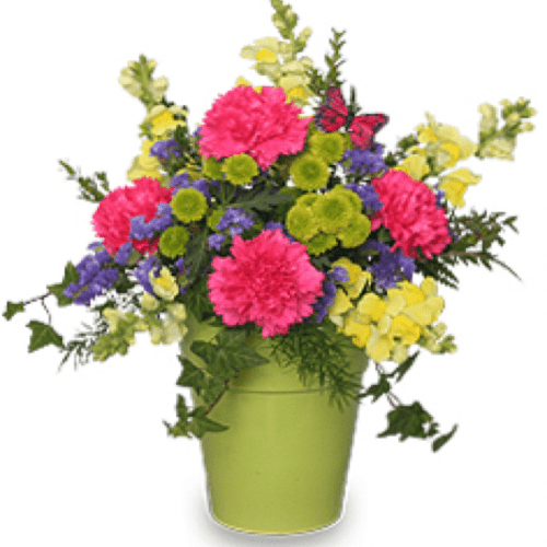 Image of the Pot O Posies floral arrangement