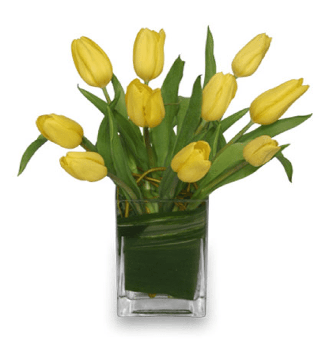 Image of the Suddenly Tulips arrangement